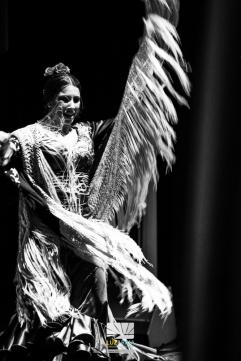 FESTIVAL FLAMENCO LAS MINAS ALDEA MORET 2015IMG_0137 291115 Luz&Raia