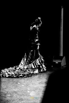 FESTIVAL FLAMENCO LAS MINAS ALDEA MORET 2015IMG_0140 291115 Luz&Raia